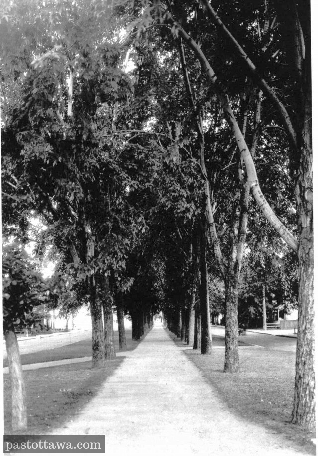 Long linear park which was separating the two lanes on King-Edward in Ottawa