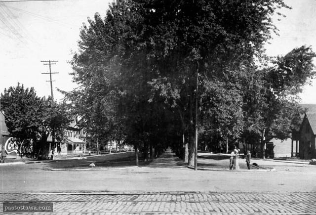 King-Edward Avenue with trees and grass in 1915 in Ottawa.