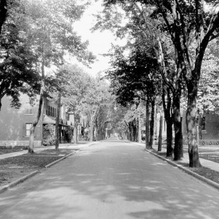 Daly Street in Ottawa in 1900