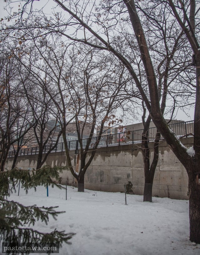 Confederation Park and the concrete wall