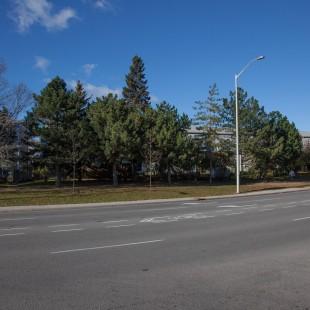 rue St-Patrick à Ottawa avant qu'ils ne construisent la nouvelle rue St-Patrick