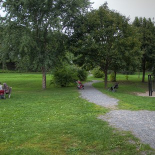 Strathcona Park in Ottawa around 2013